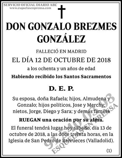Gonzalo Brezmes González